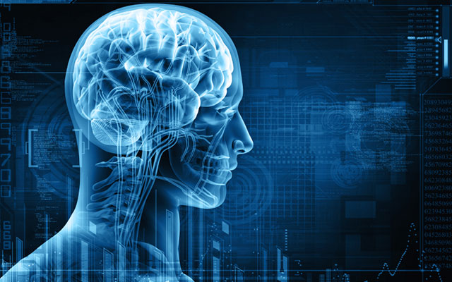 the-importance-of-a-healthy-brain